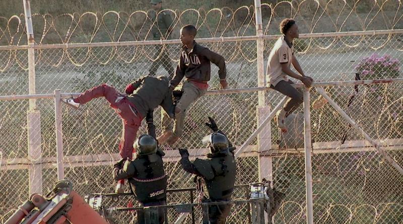 migranti Španělsko