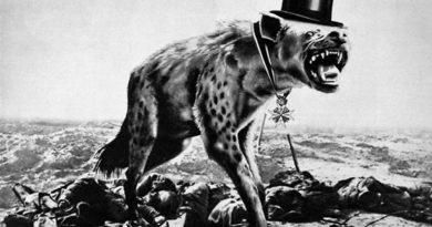Polsko hyena Evropy