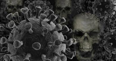 koronavirus ve světě, pokec24
