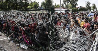 terorismus migrace, pokec24