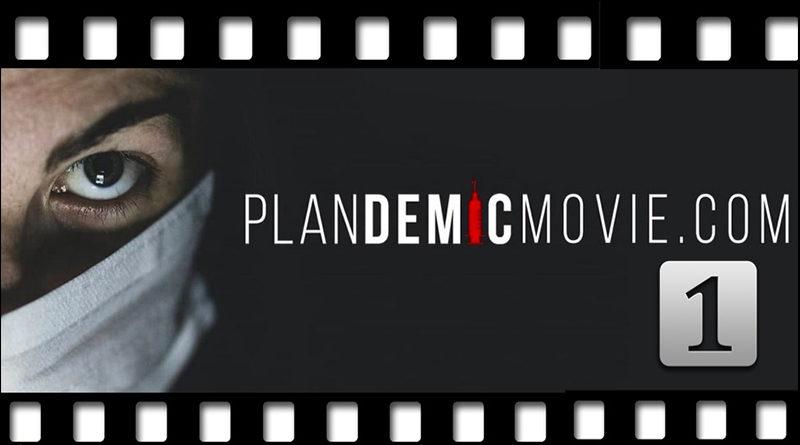 plandemic, pokec24